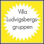 Villaludvigsbergsgruppen
