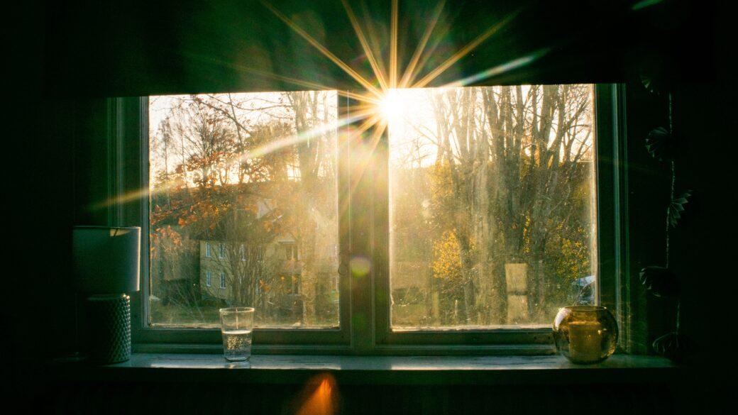 I reflektionen